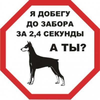 """Табличка """"Злая собака"""", размер  200*200 мм., № 19"""